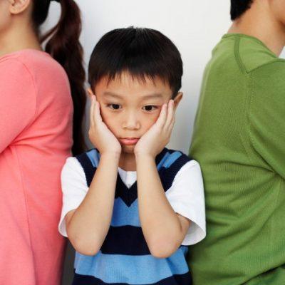Child Custody – Birdnesting